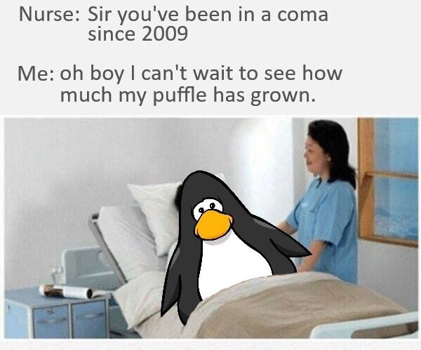 club-penguin-memes